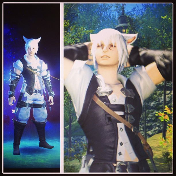 Seeker of the Sun Miqo'te